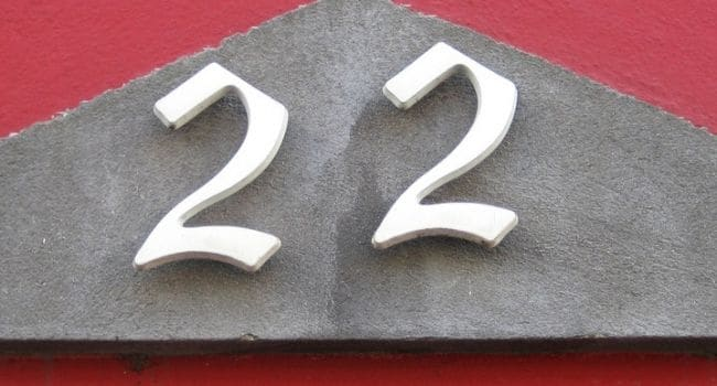 Numerologija – broj 22